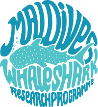 Maldives Whale Shark Research Programme